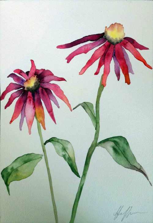 WCConeflowers