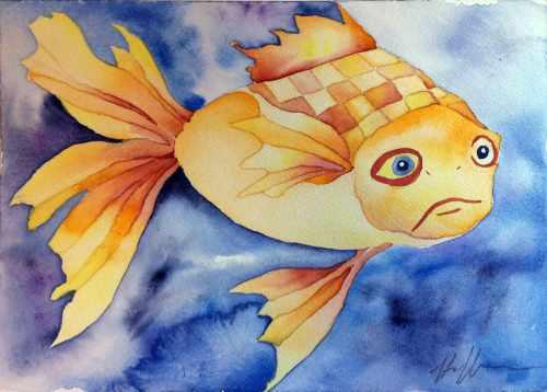 WCGoldfish